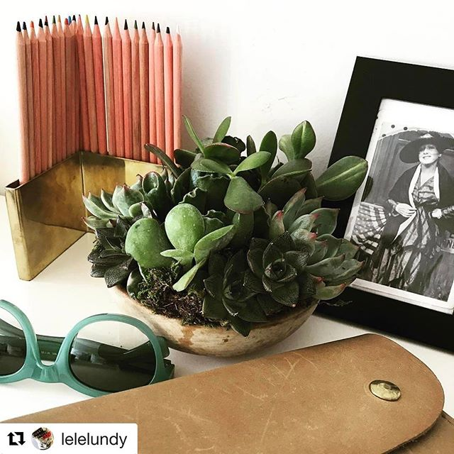 Good morning mini FatPlant sitting so beautifully beside Lisa's legendary Nana.🌱🍃❤️ #repost @lelelundy #fatplantnyc #fatplant #urbangarden #urbangardener #brooklyn #succulents #sustainable #marlowgoods #legends #nana