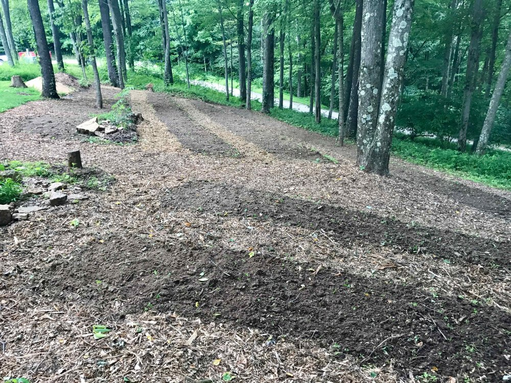 We mulched the pathways first
