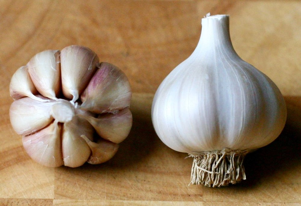 Spanish Roja - ~Hard-neck~6-12 large cloves per bulb~Stores 4-6 months~Rich and full-bodied both raw and baked; considered 'true' garlic flavor by connoisseurs