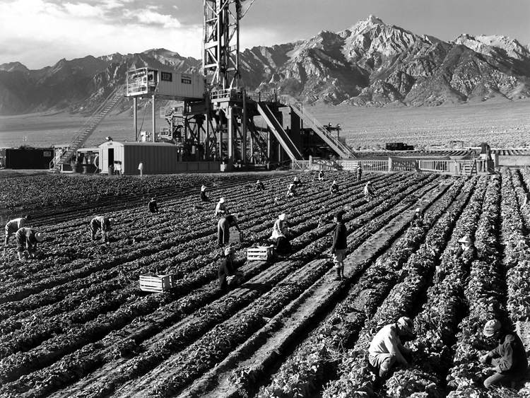 WEB--Ansel_Adams_-_Farm_workers_and_Mt._Williamson