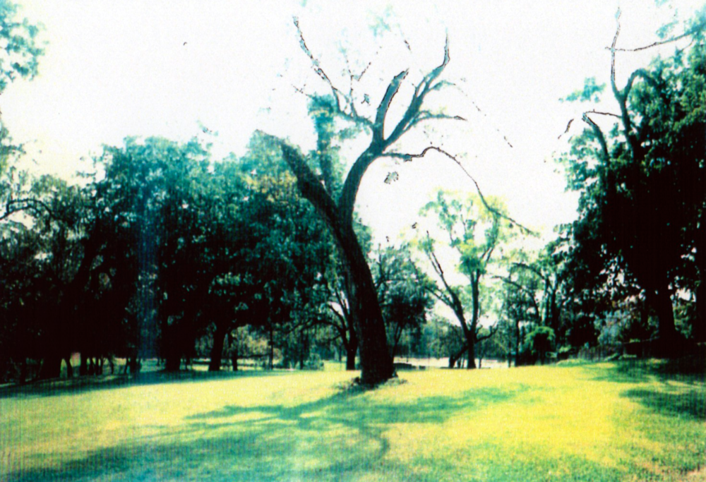 Vacant site, 1997