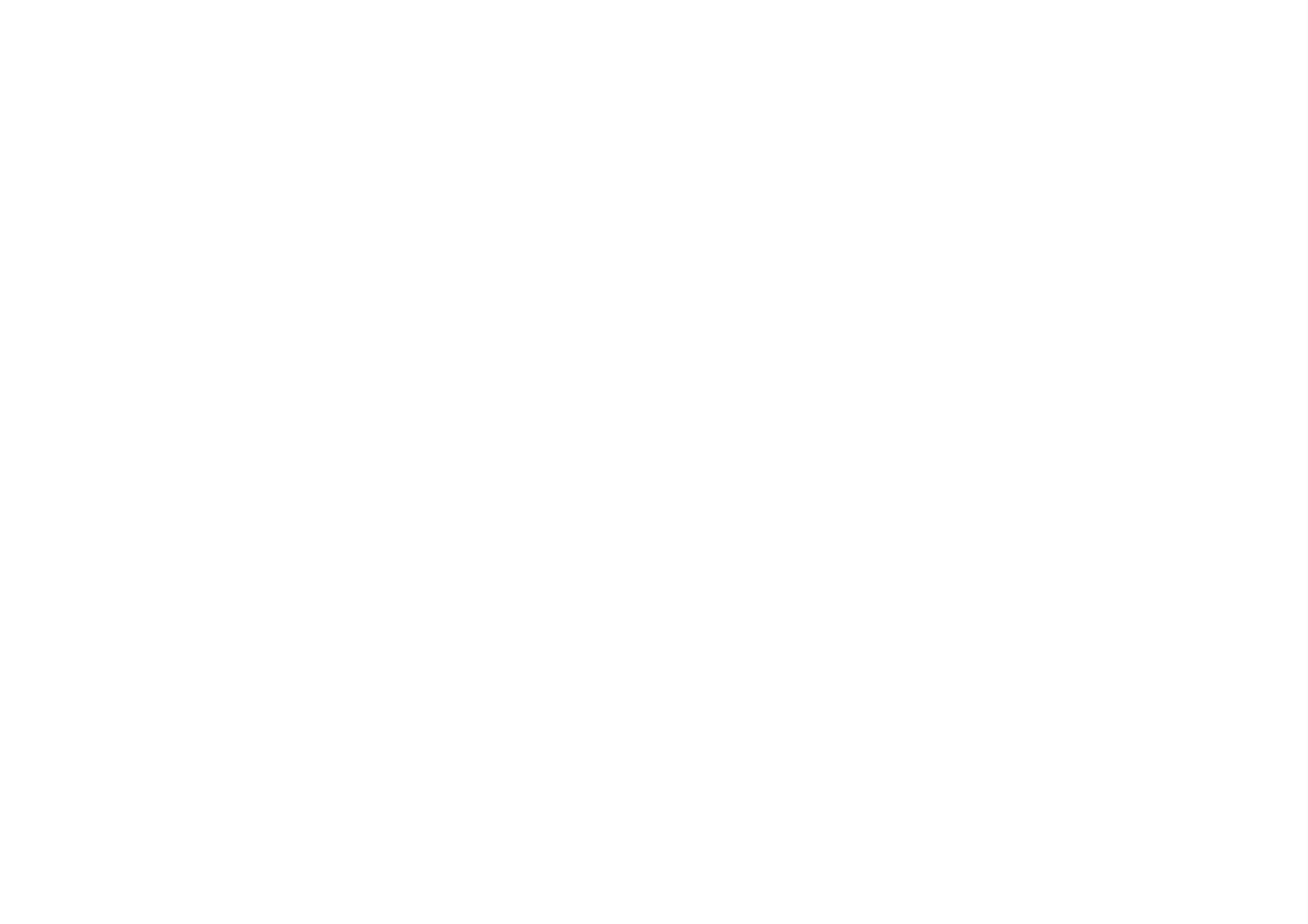 Stir Crazy Showgirls