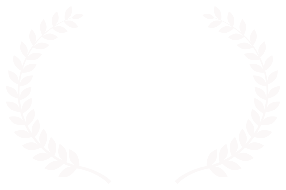 City of Shorts Film Festival - 2017 copy.png