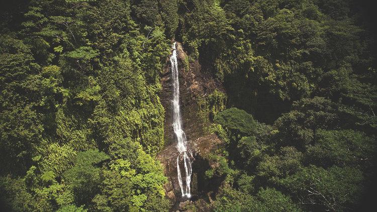 Paradise Found: Cocos Island