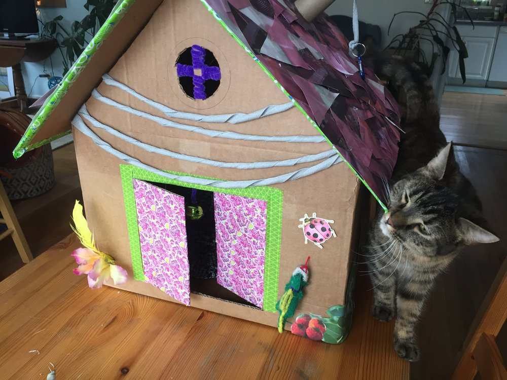 Arya depositing feline facial pheromone on her new kitty play house. Learn to make your own hluse by clicking the image.