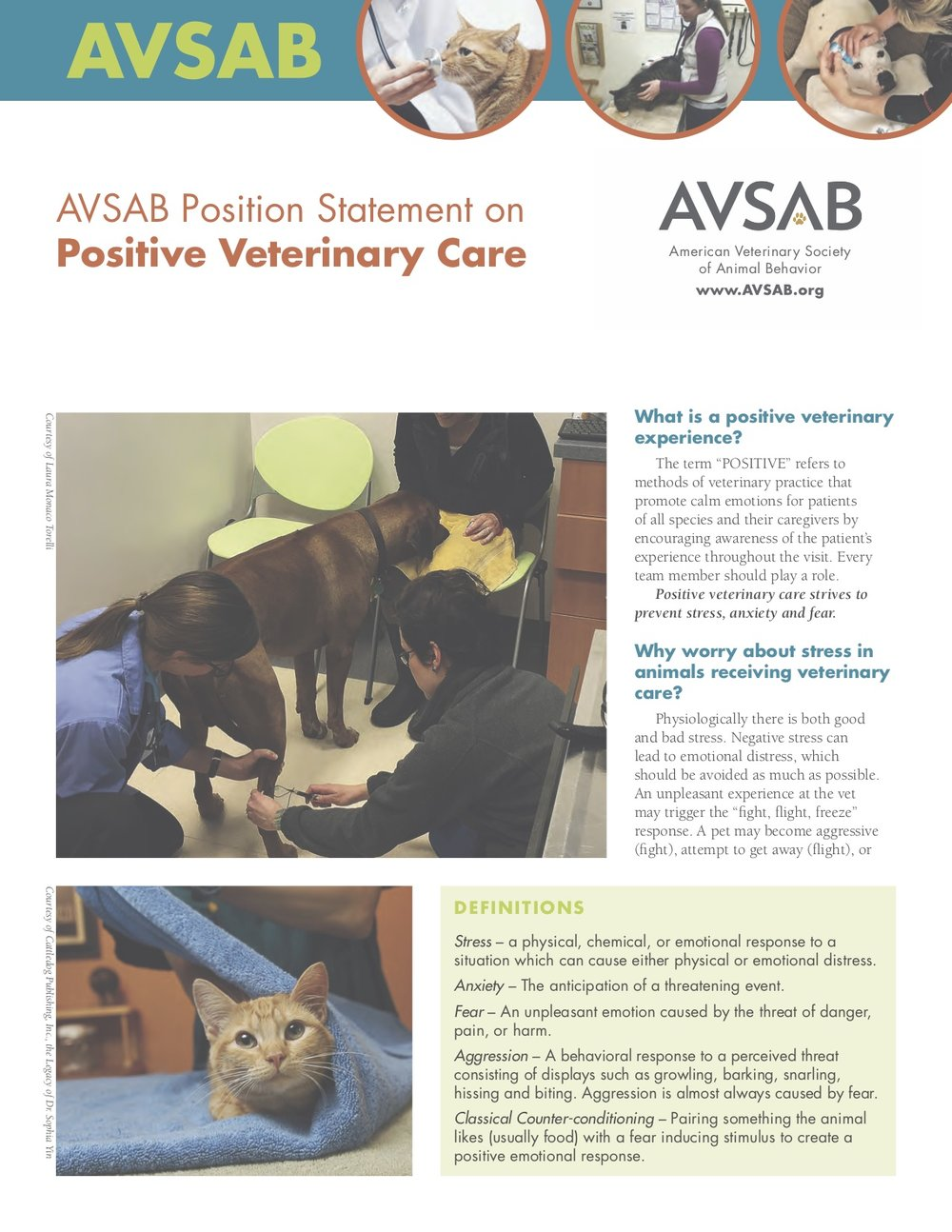 AVSAB Positive Vet Care.jpg