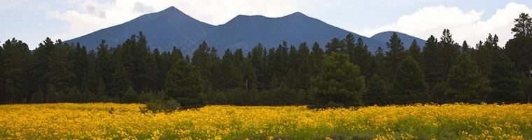 Flagstaff, AZ to Page/Lake Powell Shuttle
