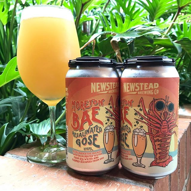 Fresh Brews for the Weekend! 🍺 NEW @newsteadbrewingco Resalinated Gose 🦀 now pouring this weekend! • Book your #HopsAndBrew The City Run Tour to indulge in the flavours @nbco_newstead!