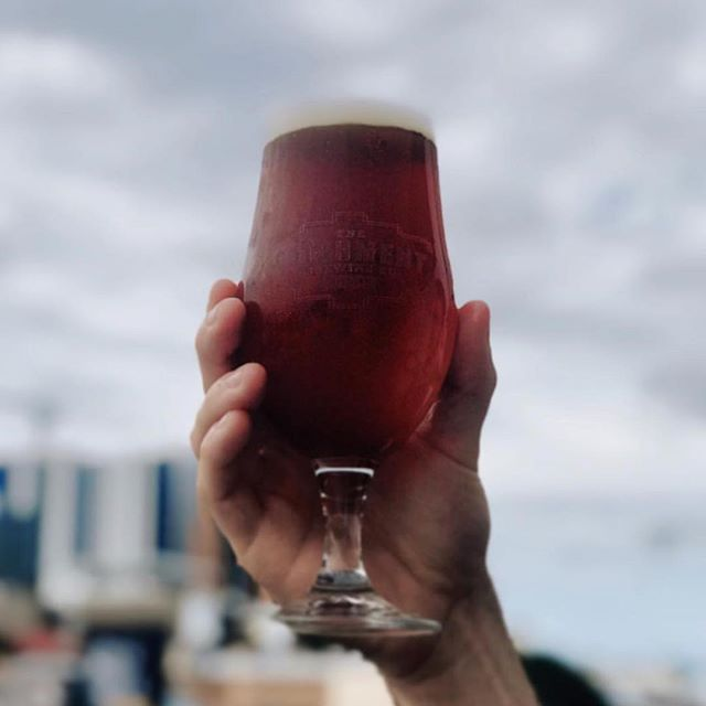 Cheers to Brisbane's best brews! 🍺 @catchmentbrewingco hailing from West End, is the finale to The City Run Tour! • Finish your afternoon of beer tasting on a high! Book now!