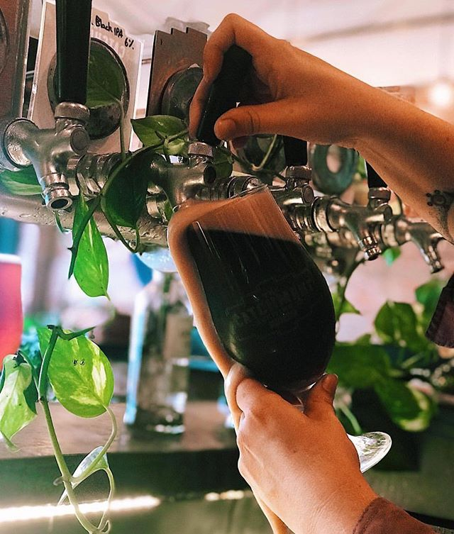Abundance at @catchmentbrewingco 🍺🍃 Sunday relaxation with the best brews in #Brisbane! Who could ask for more!? • Visit with #HopsAndBrew on The City Run Tour ⭐️