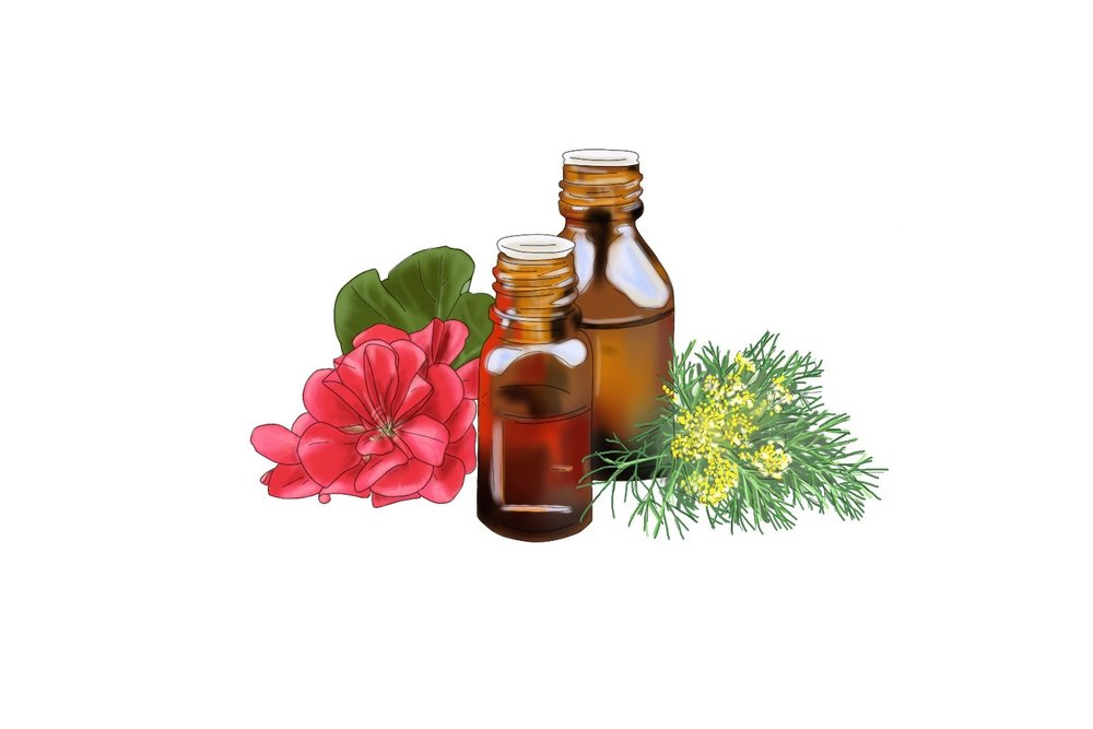 Geranium Oil - Typically derived from the green leaves of the plant rather than flowers, Geranium oil is full of botanical properties that are refreshing and act as a mild astringent. Very beneficial for oily and acne-prone skin. It also has cell-regenerating and aromatherapeutic properties, which helps to calm the mind and skin. Geranium oil is one of the oils that make up the signature scent of the Clay Mask.