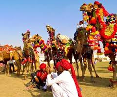 THE PUSHKAR CAMEL FAIR - COMPLETED: HAVEN'T STARTED