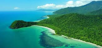 CAPE TRIBULATION - COMPLETED: HAVEN'T STARTED