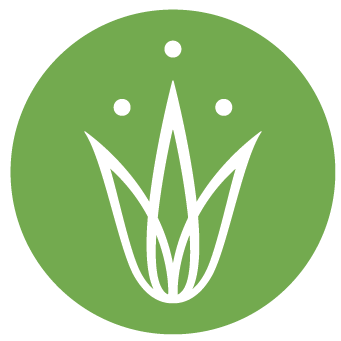 Grassroots yoga -