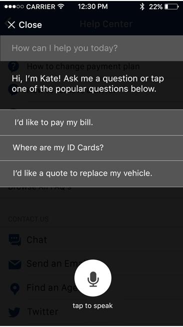 iOS App Kate Home Screen
