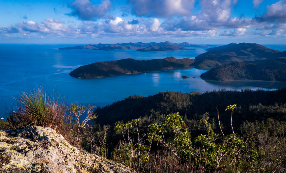 Whitsunday Peak - Whitsunday Islands National Park.jpg