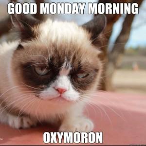 grumpy-oxymoron1-300x300.jpg