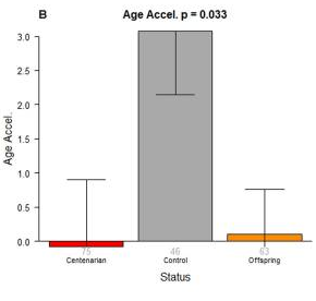 No differences are found between age acceleration in centernarians and their offspring. These data suggest that age acceleration is hereditary, in support of the epigenetic clock (Horvath et al., 2015).