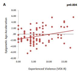 More experiences of neighborhood violence predicted greater epigenetic age acceleration, even after accounting for income, parental education, and child sex (Jovanovic et al., 2017).
