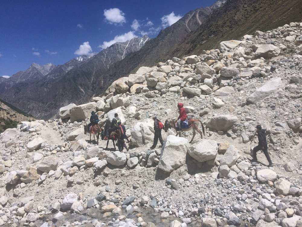 Pony Trekking to Gaumukh