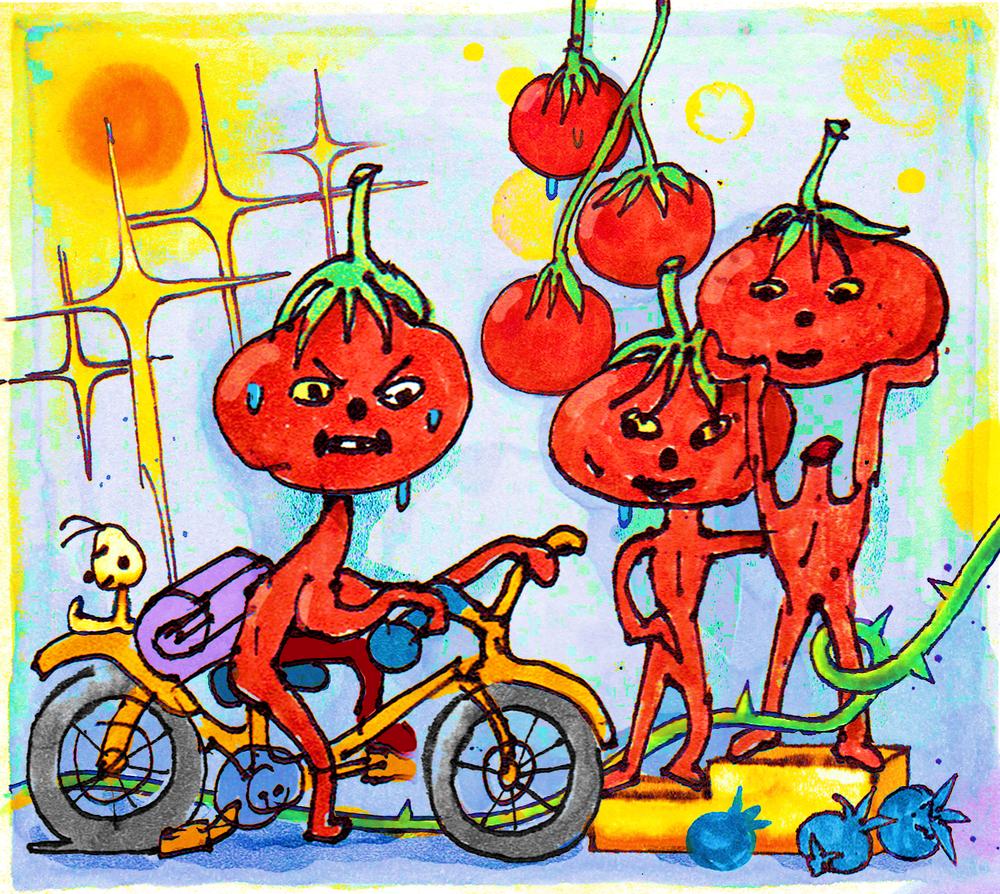tomatog14.png