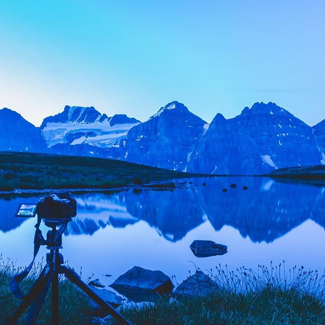 #bluehour at larch valley in #banffnationalpark #sunrise #olympuscamera