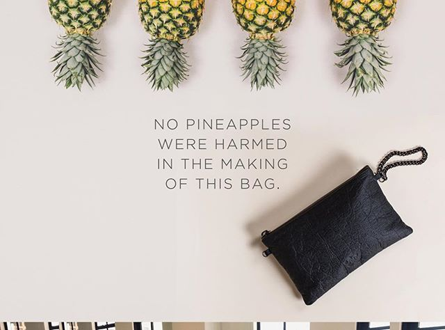 "🍍💼⚡️ON THE BLOG ⏩ why we chose Pinatex over Leather. 👀 ""It wasn't just a choice of Pinatex over leather, but rather finding a material that was 'plant based' and gentle on the environment through the production process."" For those of you who know us - you'll know we're sustainable first, vegan second. You may be surprised to learn why we chose to work with this innovative new material rather than just using a PU like most other animal-free handbag brands out there. Click through and have a peep. #ahimsacollective #pinatex #sustainablefashion"