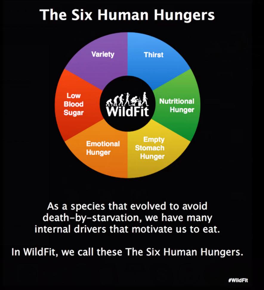 Sixhumanhungers.jpg