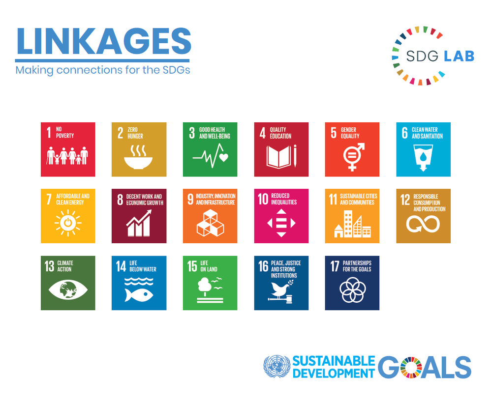 UNECE_SDG-Linkages.jpg