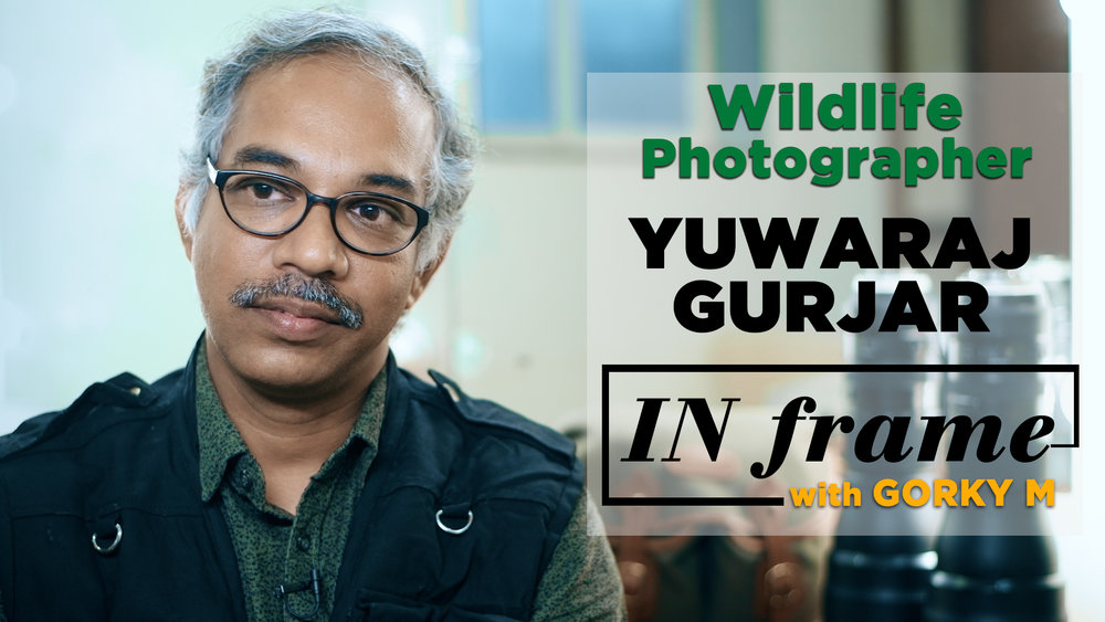 Yuwaraj_Gurjar_Interview_Wildlife_And_Macro_Photographer_In_Frame_With_Gorky_M_S01E03.jpg
