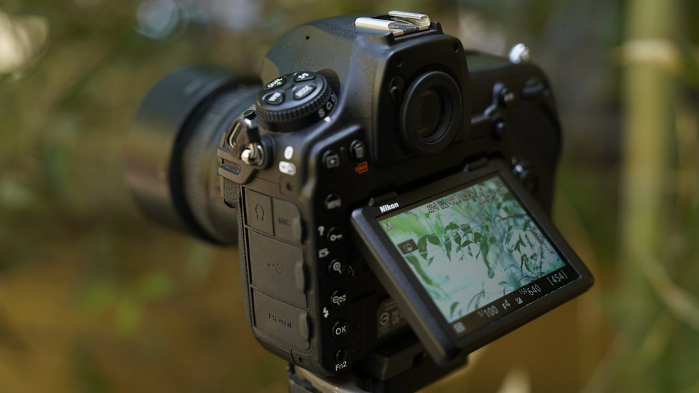 nikon_d850_feature_in_hindi_photography_gmax_studios_nikon_d850_review_india