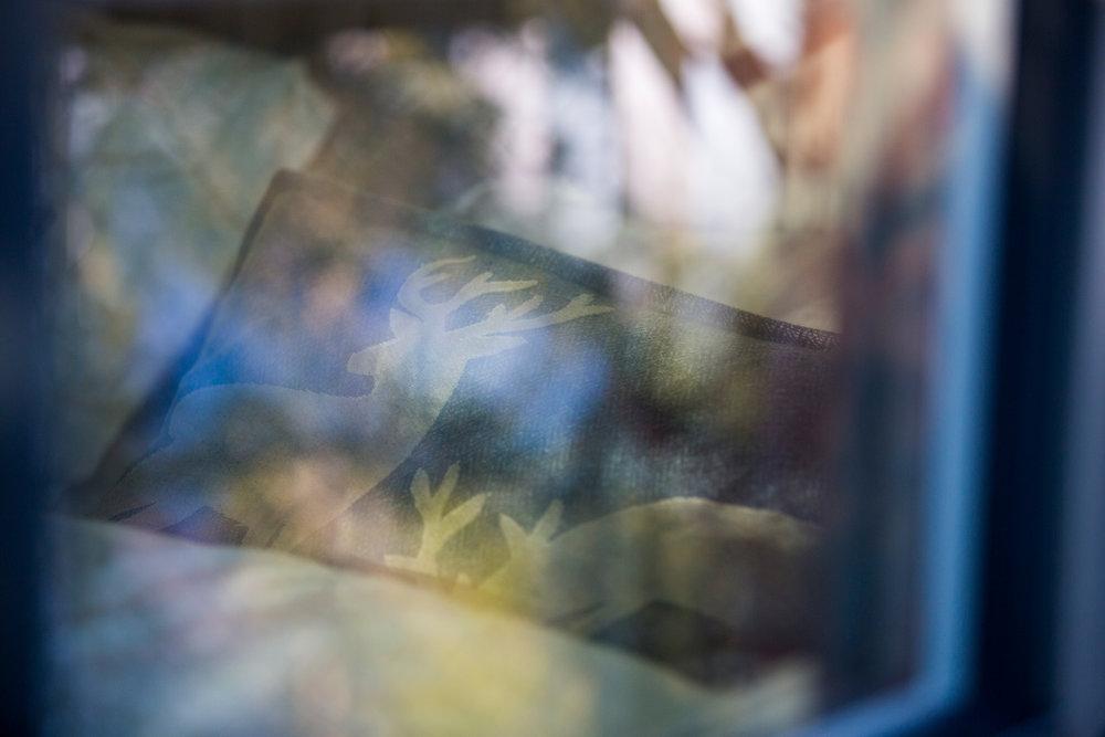 himmelhoy-tretopphytter-namdalen-12.jpg