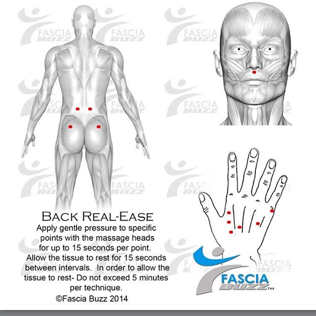 80% of Americans suffer from back pain.  The Fascia Buzz tool and techniques can provide relief fast!  Try the back release technique! Your kinetic chain points for back relief.  Connect the dots! #backpain #gymrat #fascia #fasciabuzztool #healing #snatch #crossfit #movement #massage #mobilitywod #hands #hips #dallas #dance #muscles #muscleandhealth