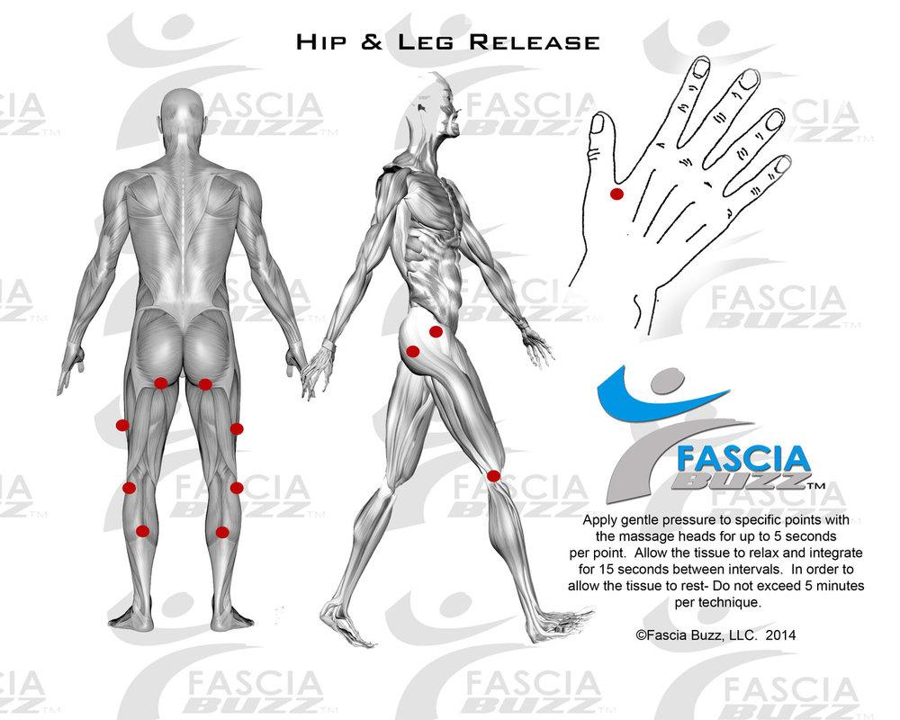 real-ease_hip leg.jpg
