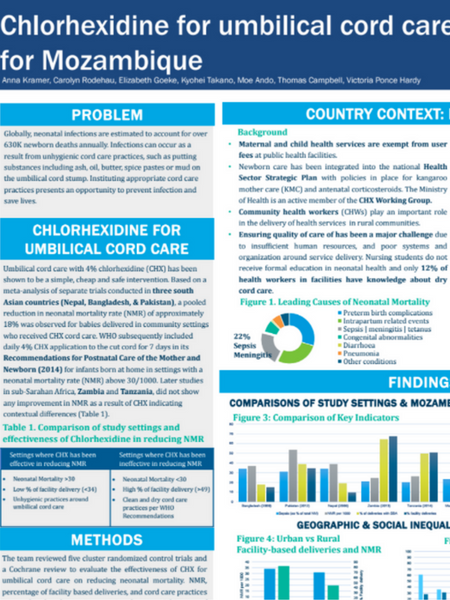 Chlorhexidine for umbilical cord care: Recommendations for Mozambique