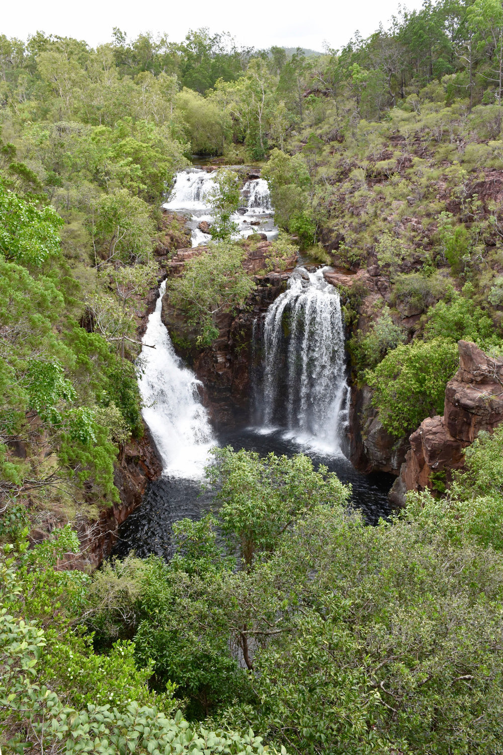 Litchfield National Park Tour NT Day Tours Florence Falls