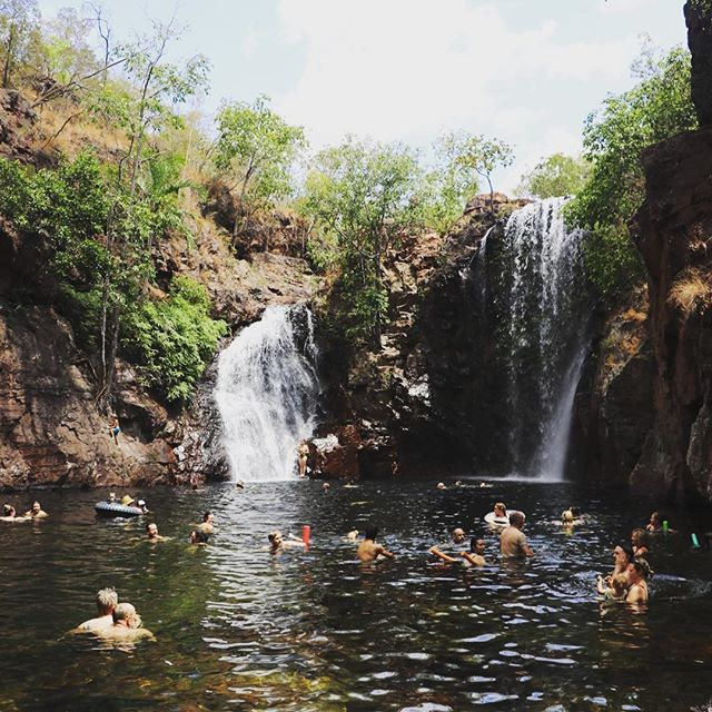 Up for a swim?! 💦💦 . . . #ntdaytours #litchfieldswimmingadventures #litchfieldnationalpark #florencefalls #dothent #northernterritory #darwin #bustour #budgettour #backpackertour #darwinbackpackers #familytour #waterfall