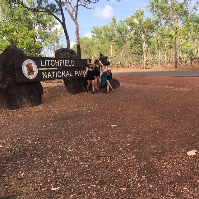 Say cheese! 🧀 . . . . #litchfieldswimmingadventures #ntdaytours #litchfieldnationalpark #dothent #northernterritory #australia #outback #waterfalls #rockpools #wanderlust #darwin #tour