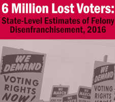 Felony Disenfranchisement