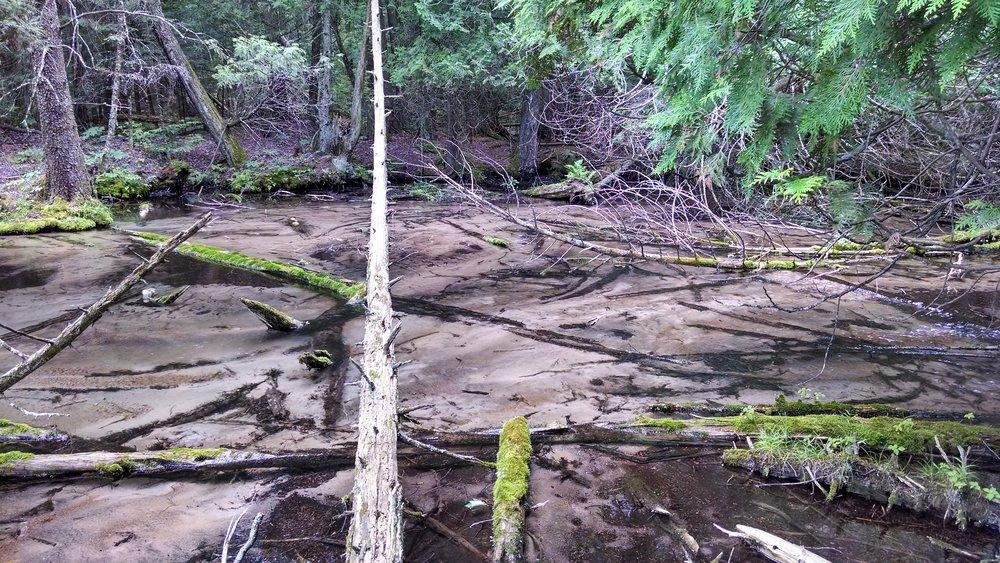 Stockbridge-Munsee Community Water Resources Program