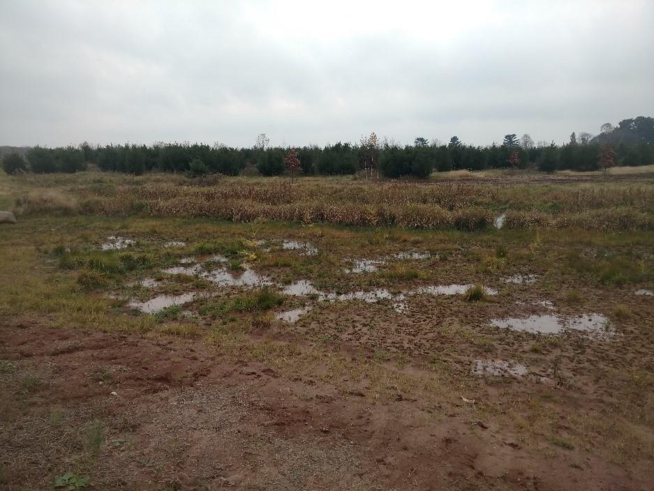 Project: Cemetery Scrape