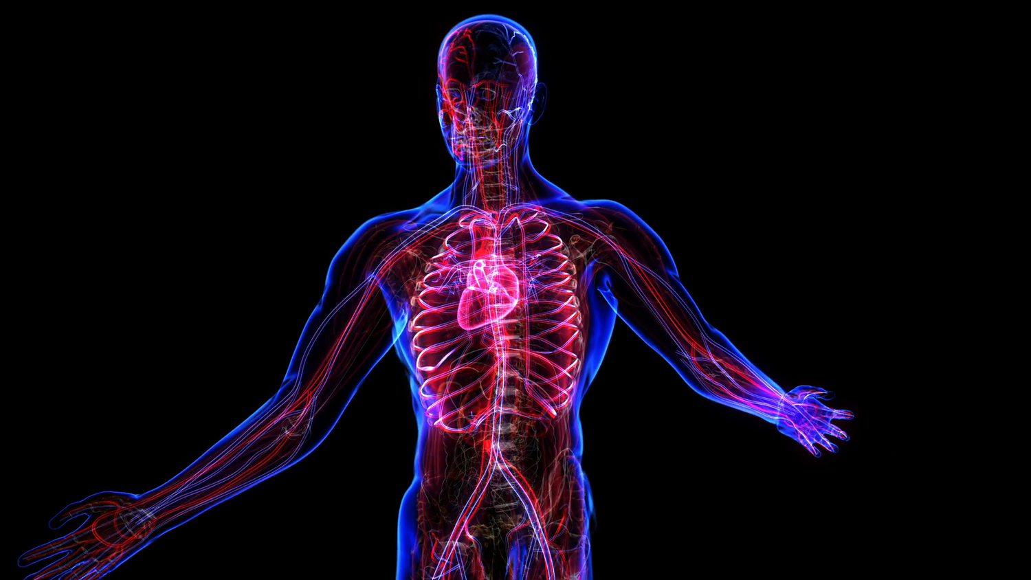 Automation and the Body: Energy vs. Power — Advanced Regenerative ...