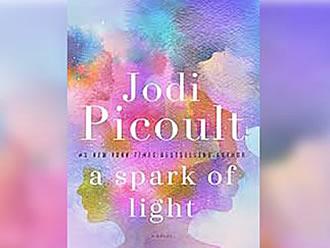 jodi-picoult-a-spark.jpg