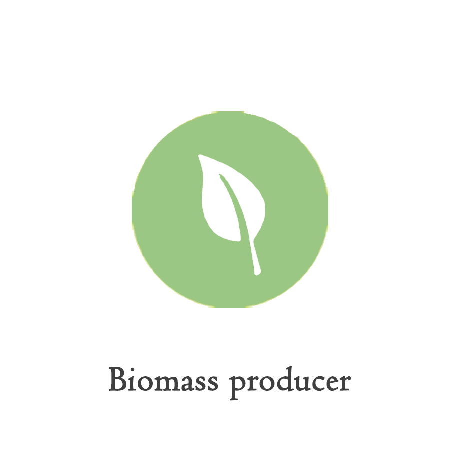 ICON_biomass-producer.png