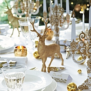 Christmas party tableware -