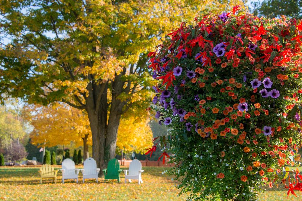 GardensOfMatterPark_Fall2016_087.jpg