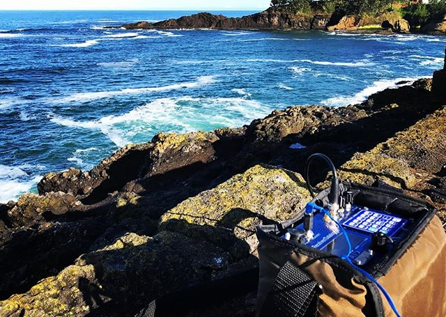 Interested in learning more about how we track Marbled Murrelets along the Oregon Coast? Check out our blog (linked from the website) to see a great piece on radio telemetry by one of our field crew leaders.  #radiotelemetry #oregonmurrelet #marbledmurrelet #marbledmurrelets #seabird #scienceandtechnology