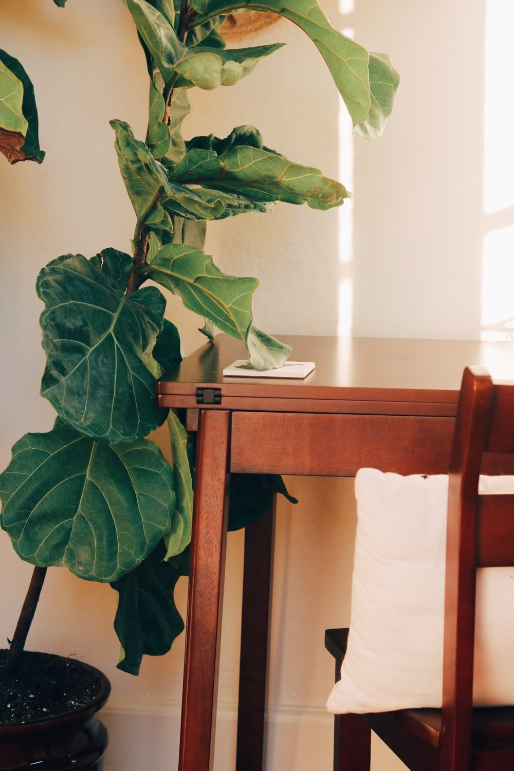 Another look at the desk area. I have a bit of a gallery wall happening but it's currently blocked by our Fiddle Leaf Fig.   He's hanging on and definitely looks a little better than when we brought him home from Home Depot.