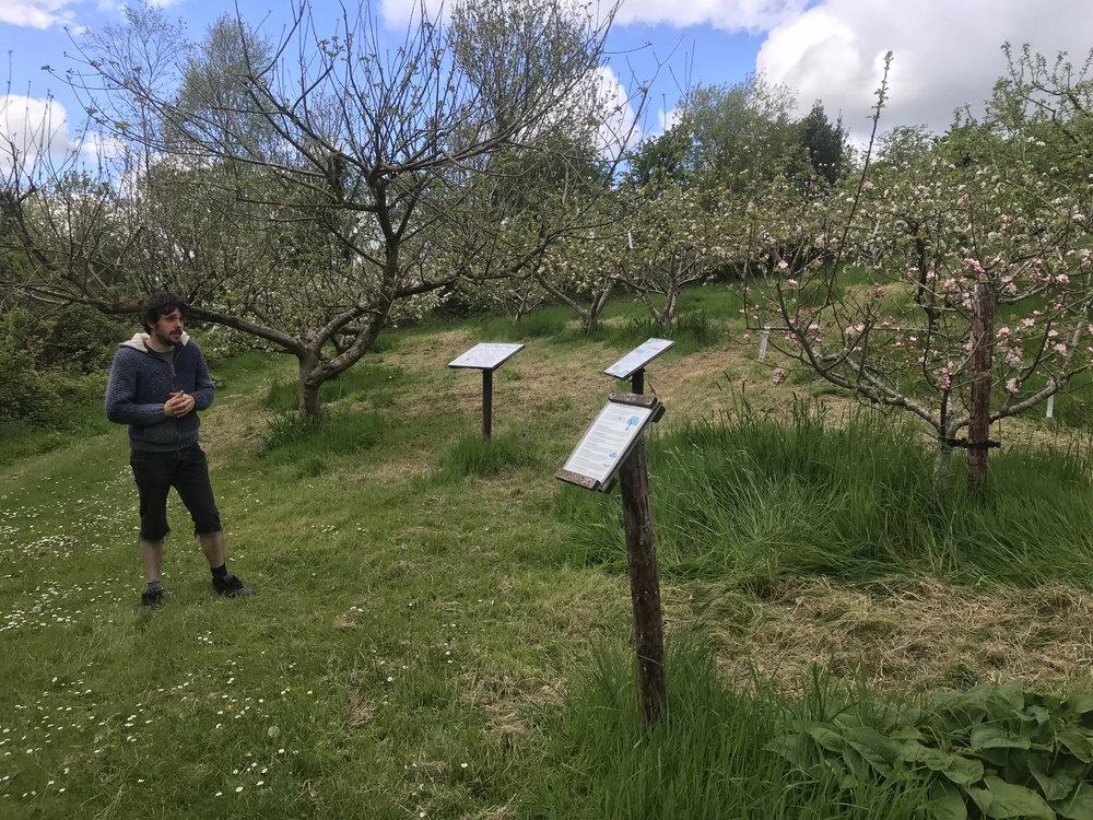 jason orchard copy.jpg