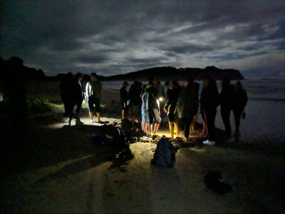 Our late night low-tide excursion to Hot Water Beach. Photo: Susanna Kelly